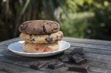 Patisserie Lyon, livraison de pâtisserie pour professionnels de la restauration, patisserie artisanale, dessert lyon, fabricant de dessert lyon, cookies, Anais Cookies & Cie